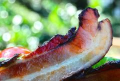 Natural Pastured Bacon